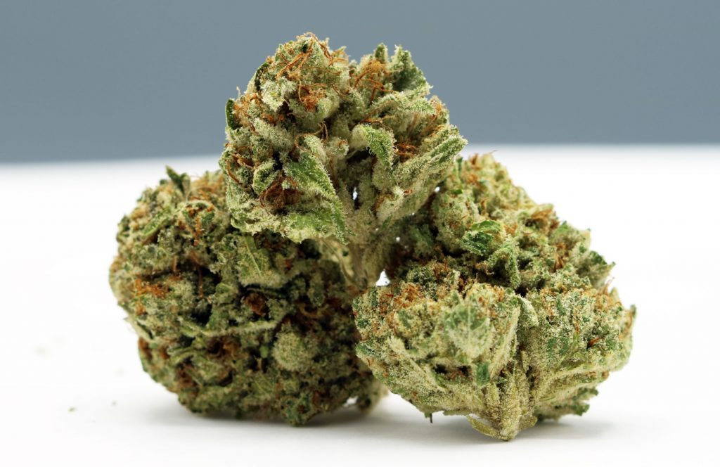 Head Dog 7 strain review